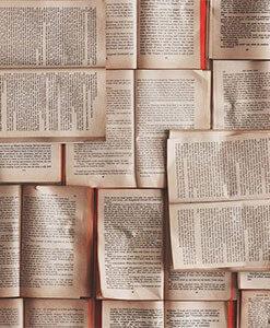 Язык и Лингвистика